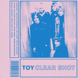 toy-clear-shot_1479738209
